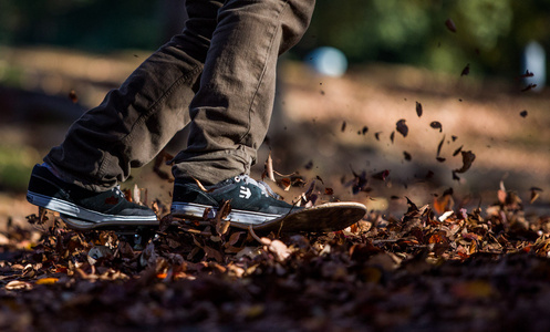 Skateboarder slides through fall leaves